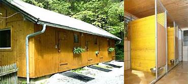 Zwinger (Hundeboxen) im Hundehaus Alpengasthof Enzingerboden