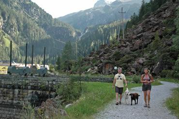 Spaziergang mit Hund am Enzingerboden