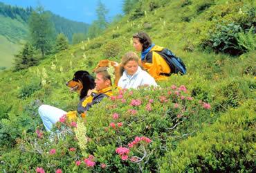 Alpengasthof Enzingerboden, Uttendorf, Urlaub mit Hund, Wanderurlaub, Familienurlaub, Schiurlaub - Wandern mit Hunde